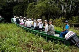 Turistas passeiam pelos igapós amazonicos