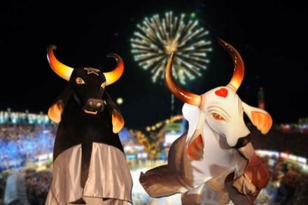 Bumbas Caprichoso e Garantido, os astros do Festival