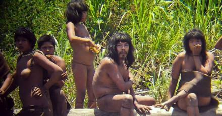 Amazonas ainda tem 16 grupos indígenas, isolados, segundo a Funai