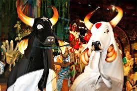 Interdição da do Porto, devido a problemas na orla, afetará o Festival Folclórico