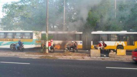 Ônibus pega fogo na Av. Cosme Ferreira e assusta passageiros