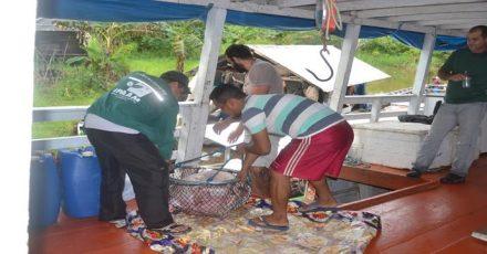"""""""Apreensão Malhadeira"""" em ação contra a pesca ilegal no Amazonas"""