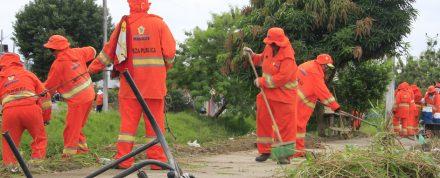 Mutirão da limpeza atua na Terra Nova