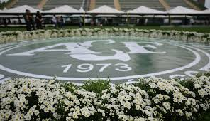 As flores estavam por todo os locais da Arena
